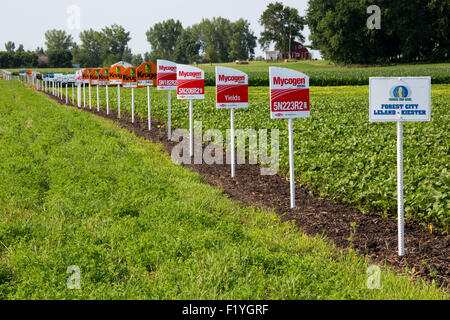 Forest City, Iowa - Signs mark different crop varieties in a soybean field, including crops genetically modified. - Stock Photo