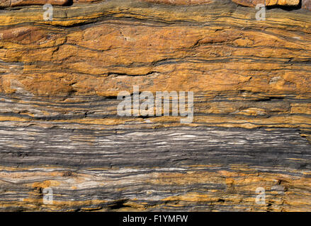 Carboniferous Rocks at Scremerston, Berwick Upon Tweed, Northumberland, England - Stock Photo
