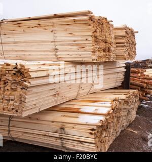 Stacks of timber and tree trunks in timber yard - Stock Photo