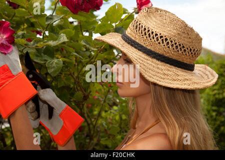 Woman pruning tree in garden
