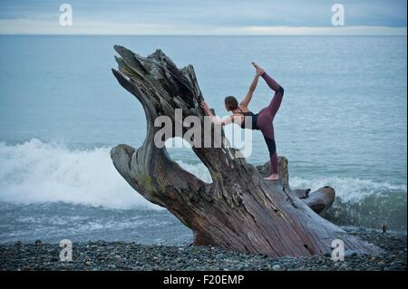 Mature woman practicing yoga position on large driftwood tree trunk at beach - Stock Photo