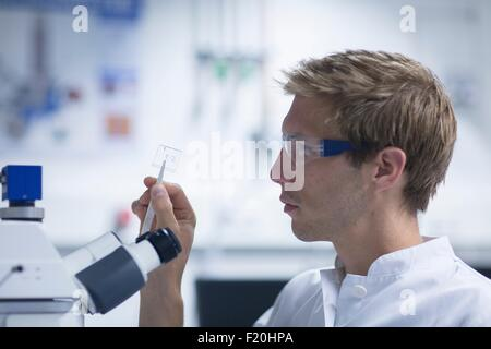 Male scientist looking at microscope slide in laboratory - Stock Photo