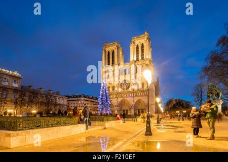 France, Paris, the Notre Dame Cathedral on the Ile de la Cite - Stock Photo
