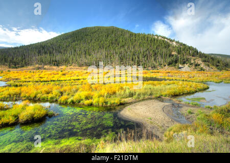 Serene scene of fall colors in the mountains in Montana. - Stock Photo