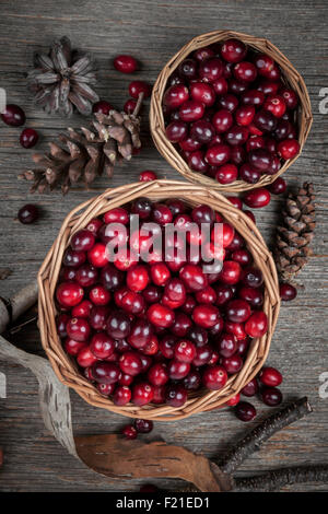 Fresh ripe cranberries in two baskets on rustic dark wooden background with pine cones, overhead view. - Stock Photo