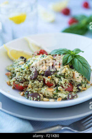 Grilled chicken with pesto and quinoa salad with vegetables - Stock Photo