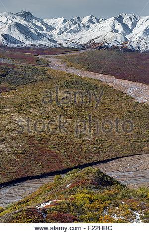 Polychrome Pass in Denali national park - Alaska - Stock Photo