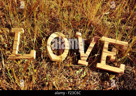 high-angle shot of wooden letters forming the word love on the grass - Stock Photo