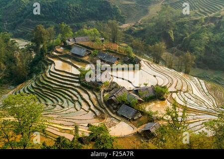 Vietnam, Lao Cai province, Sa Pa district, rice plantations in terrace - Stock Photo