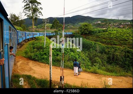 Sri Lanka, Central Province, the popular scenic train ride through the tea growing hill country between Hatton and - Stock Photo