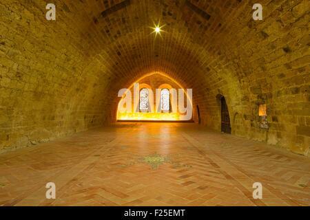 France, Aude, Narbonne, sainte Marie de Fontfroide cistercian abbey, the monk's dormitory - Stock Photo