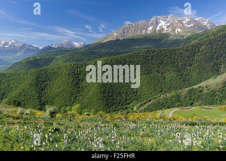 France, Hautes Pyrenees, Aspin pass, Aure valley - Stock Photo