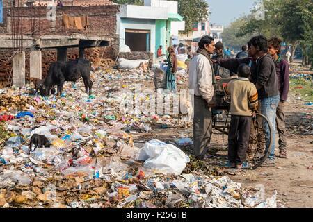 India, Uttar Pradesh state, Agra, street garbage - Stock Photo