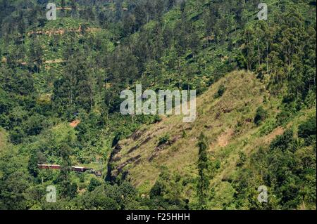 Sri Lanka, Uva Province, train on the railway track that goes through the tea growing hill country next to Ella - Stock Photo