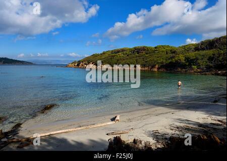 France, Var, Iles d'Hyeres, Parc National de Port Cros (National park of Port Cros), Port-Cros island, South Beach - Stock Photo