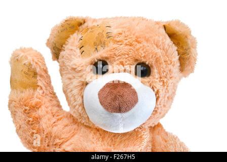 friendly good cream teddy bear with big eyes - Stock Photo