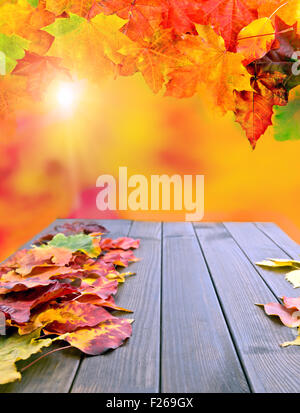 Collage of Autumn Fall colorful leaves - Stock Photo
