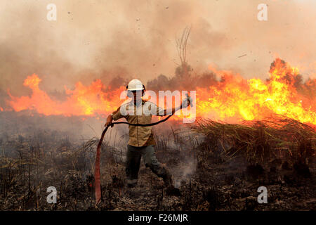 South Sumatra, Indonesia. 12th Sep, 2015. An Indonesian soldier tries to extinguish a forest fire on a peat land - Stock Photo