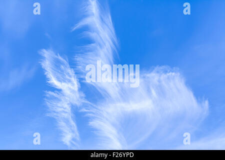 Cirrus clouds in blue sky on a bright sunny day. - Stock Photo