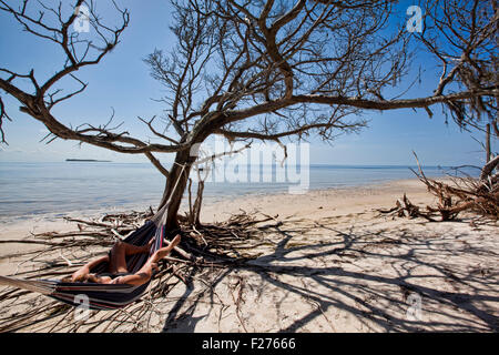Woman laying in a hammock strung from an old Oak Tree that is right along the shoreline of a sandy beach - Stock Photo