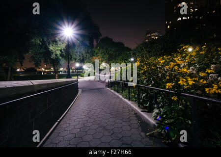 Flowers along a walkway at night, at the Hudson River Park, in Battery Park City, Manhattan, New York. - Stock Photo