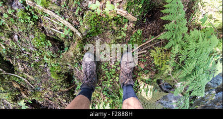 Hiking boots, feet on the forest ground, Austria - Stock Photo