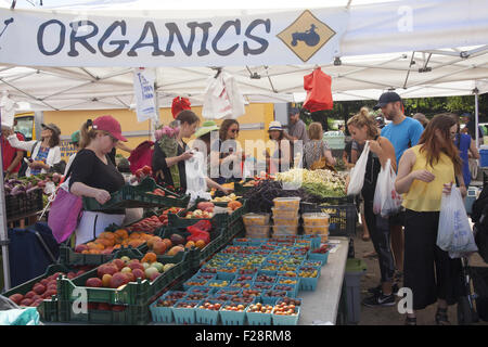 Health conscious people shop at the Grand Army Plaza Farmers Market in Brooklyn, NY. - Stock Photo