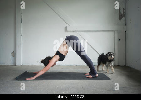 Mid adult woman practicing downward facing dog pose in yoga studio, Munich, Bavaria, Germany - Stock Photo