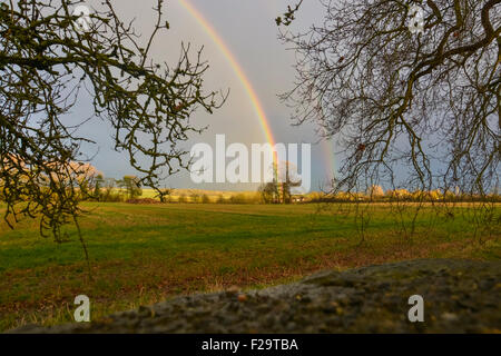 A tree at the end of the rainbow - Stock Photo