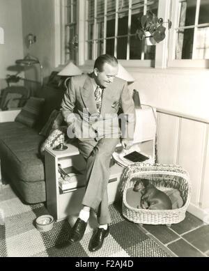 Tuckered out dachshund fast asleep in basket (OLVI007 OU846 F) - Stock Photo
