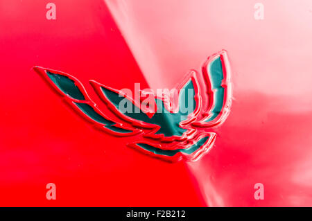 Pontiac Firebird Badge Stock Photo 113502552 Alamy