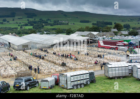 Hawes, North Yorkshire, UK. 14th September, 2015. The harvest of the hills takes place in the Wensleydale market - Stock Photo