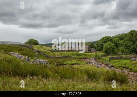 Farm in the Yorkshire Dales near Ribblehead - Stock Photo
