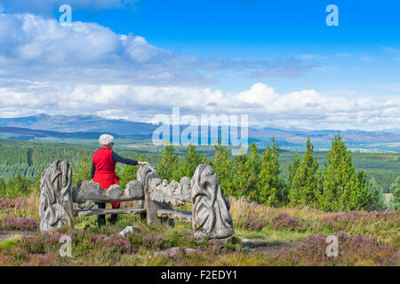 ABRIACHAN TRAIL OR WALK AND CARVED SEAT SET ABOVE LOCH NESS WITH A VIEW TO DISTANT HILLS - Stock Photo