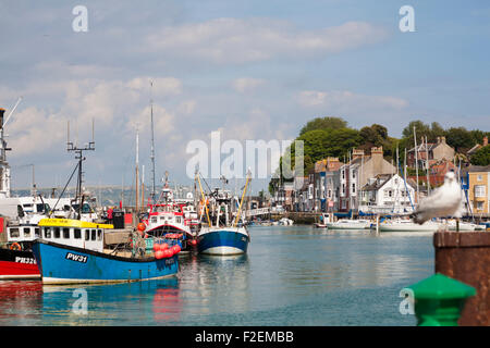Boats moored along the quay at Weymouth in June - Stock Photo