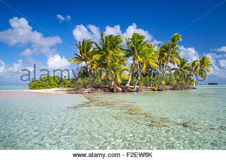 Fakarava (French Polynesia) - Stock Photo
