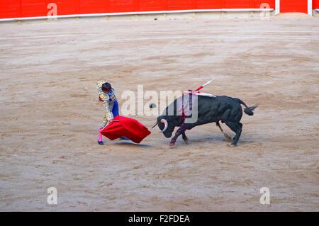 Spanish bull attacks the bullfighter during a bullfight in La Monumental arena in Barcelona, Catalonia, Spain. - Stock Photo