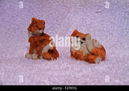 Cat models - Stock Photo