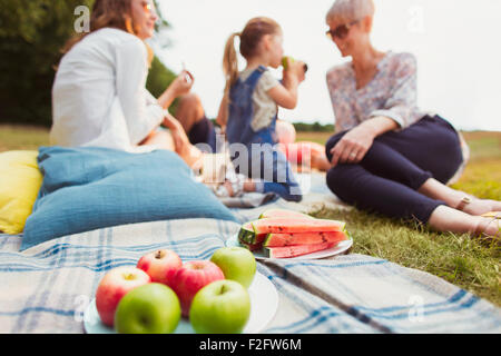 Apples and watermelon on picnic blanket near multi-generation family - Stock Photo