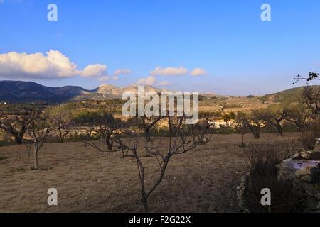 La Vall d'Alcala from Beniaia in the Marina Alta region of Alicante - Stock Photo