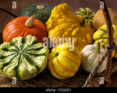 Winter squashes and pumpkins - Stock Photo