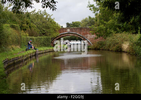 Angler pole fishi near Penkridge on the Staffordshire and Worcestershire Canal. UK - Stock Photo