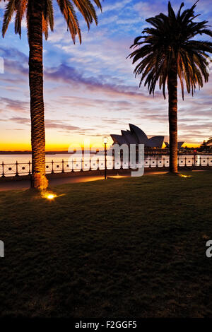 A view of Sydney Harbour and Opera House at dawn.