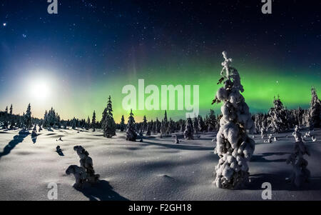Flames in the North - Aurora borealis over snowy Finland - Stock Photo