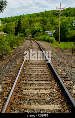 Railroad tracks disappearing around a bend in the distance