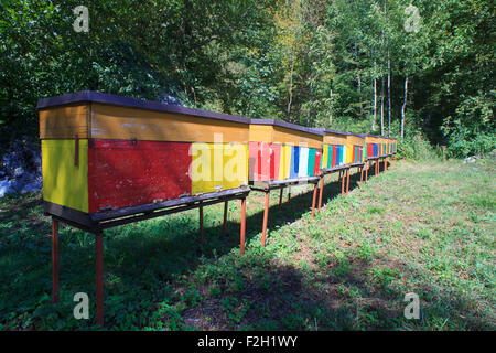View of Rural wooden beehives on meadow - Stock Photo
