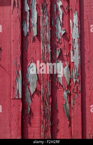 A full frame red wood texture with peeling paint and space for text - Stock Photo