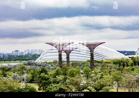 Garden By The Bay August 2014 singapore - august 5, 2014: supertree grove at gardensthe bay
