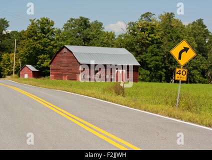 Yellow Lines On Country Road With Bare Oak Tree In The