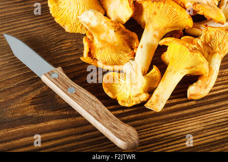 Yellow chanterelles and knife on wooden table - Stock Photo